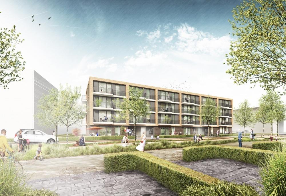 Neues Wohnen am Buchholzer Grün